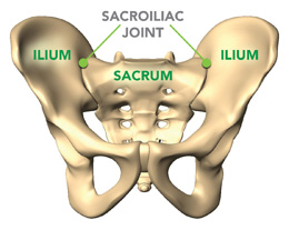 Low back pain care at Panorama Orthopedic